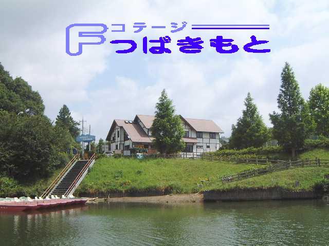 Zenkei11progo_3